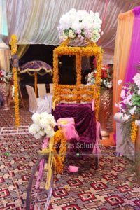 decor experts, tricycle decor