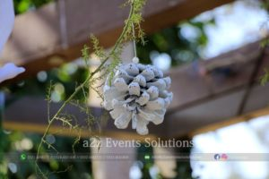 wedding decor service providers, wedding management company in lahore