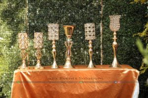 royal decor, outdoor decor, event designers and planners