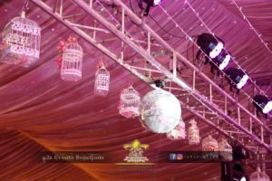 decor experts and specialists, hanging garden