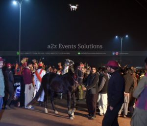 wedding horse service providers in lahore