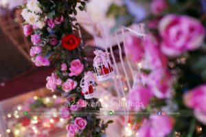 imported flowers decor experts, fresh flowers decor experts