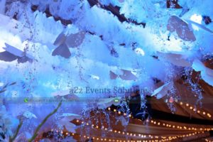 designers and decorators, hanging garden, creative decor, party planners